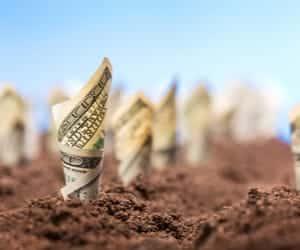 ביצוע השקעה בקרקע חקלאית