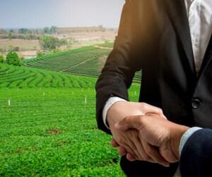 ההשקעה בקרקע חקלאית