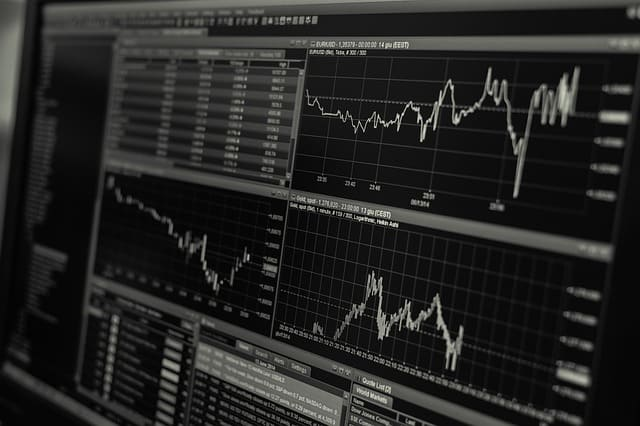 בדיקות לפני השקעות בשוק ההון